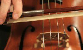 ASO losing cellist, violist to retirement